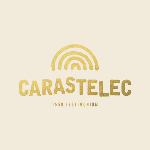 carastelec-partner